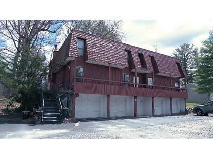 297-A Shore Dr  Montague Township, NJ 07827 MLS# 3226478