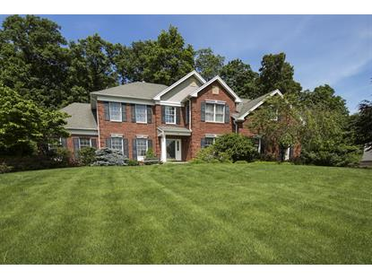 9 Briarhurst Dr  Mount Olive, NJ MLS# 3228376