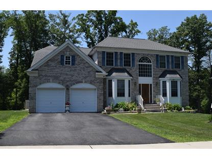 7 Red Maple Ln  Mount Olive, NJ MLS# 3228460