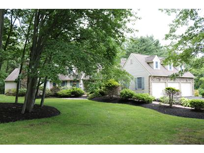 331 ROCKTOWN-LAMB RD  West Amwell, NJ MLS# 3228771