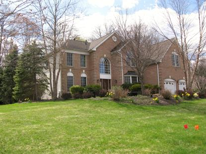 3 Vista Dr  Mount Olive, NJ MLS# 3229205