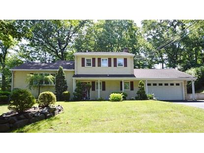 220 Summit Rd  Springfield, NJ MLS# 3230576