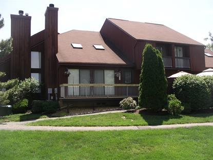 41-22 BLOOMINGDALE DR  Hillsborough, NJ MLS# 3230744