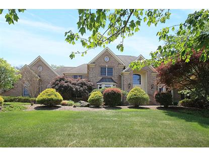 6 Raspberry Trl  Warren, NJ MLS# 3232179