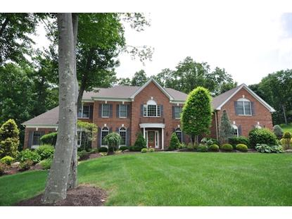 14 Fennimore Ct  Mount Olive, NJ MLS# 3232204