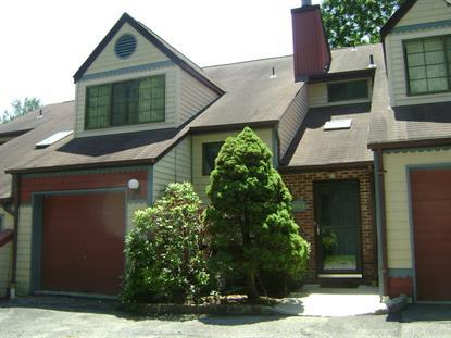 1003 Bryan Ct  Mine Hill, NJ MLS# 3232571