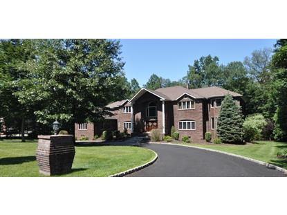 25 High Mountain Dr  Montville Township, NJ MLS# 3232662