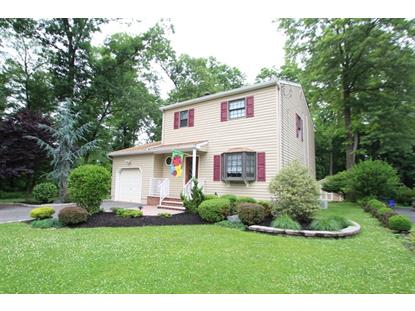 146 W Golf Ave  South Plainfield, NJ MLS# 3233217