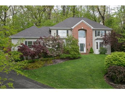 55 Bellegrove Ct  Bernards Township, NJ MLS# 3234247