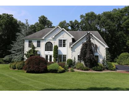 10 Courtney Dr  Mount Olive, NJ MLS# 3234607