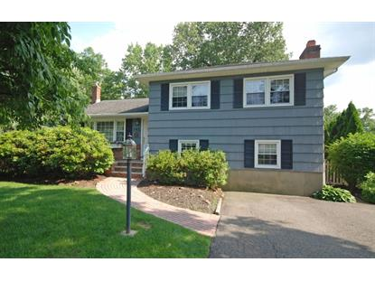 142 Rahway Ave  South Plainfield, NJ MLS# 3234815