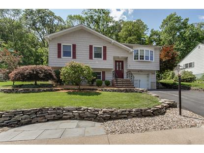 122 Red Twig Trl  Bloomingdale, NJ MLS# 3237544