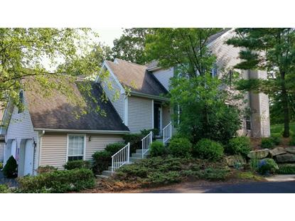 133 Crestview Ln  Mount Arlington, NJ MLS# 3238940