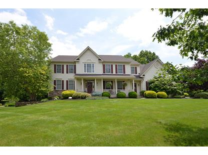 24 Steeple View Ct  West Amwell, NJ MLS# 3240060