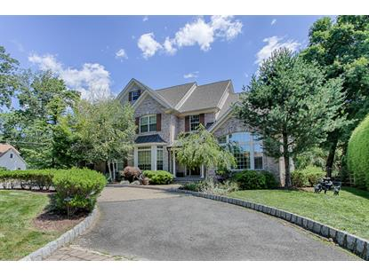 29 Arlington Ave  Parsippany-Troy Hills Twp., NJ MLS# 3242199