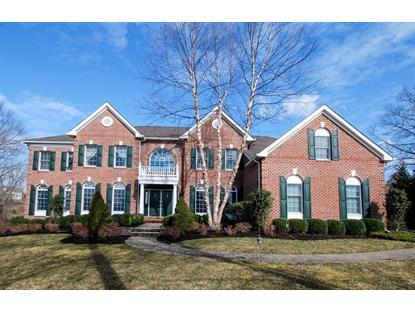 11 Canterbury Way  Bernards Township, NJ MLS# 3244680