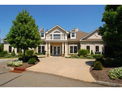 1002 Holly Ln  Cedar Grove, NJ MLS# 3245255