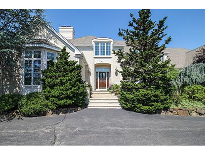 9 Michelle Way  Montville, NJ MLS# 3245486