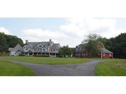 216 Pleasant Hill Rd  Chester, NJ MLS# 3249879