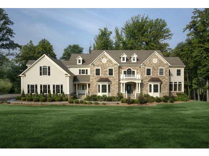 88 Emerald Valley Ln  Bernards Township, NJ MLS# 3251190