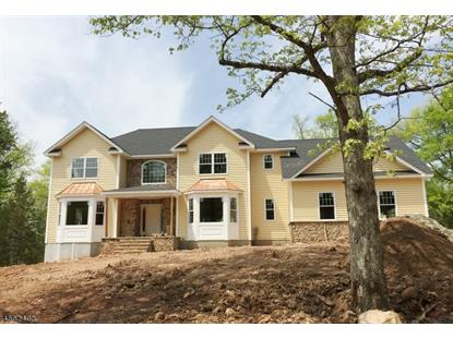121 Mountainside Ln  Bridgewater, NJ MLS# 3253525
