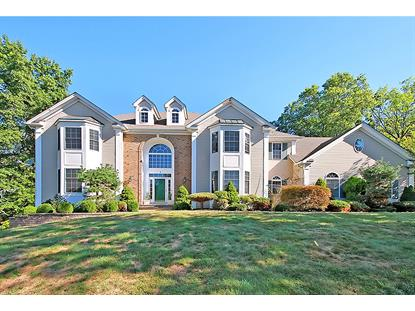 5 Yohn Dr  Bridgewater, NJ MLS# 3254272