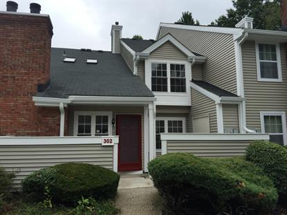302 Greenbriar Dr  Union, NJ MLS# 3255136