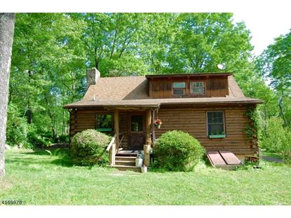 17 Cokesbury Califon Rd  Clinton Twp, NJ MLS# 3256183