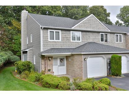 57 Continental Rd  Parsippany-Troy Hills Twp., NJ MLS# 3256631