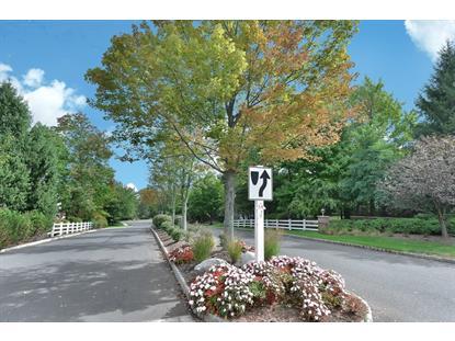 14 Prescott Ct  Bernards Township, NJ MLS# 3256797