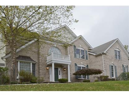 1 Vista Drive  Mount Olive, NJ MLS# 3256814