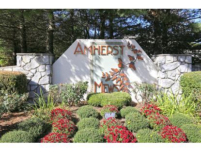 13 Benedict Cres  Bernards Township, NJ MLS# 3258475