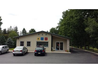 Real Estate for Sale, ListingId: 35858592, Byram Twp,NJ07821