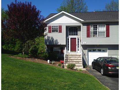 21 Oak Point Dr  Hamburg, NJ MLS# 3262641