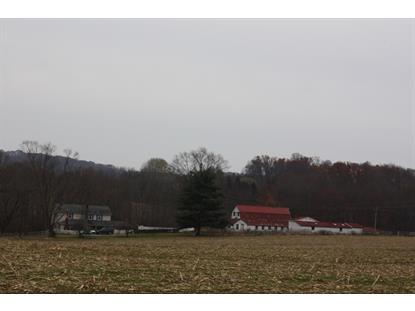 Real Estate for Sale, ListingId: 36367895, Hampton,NJ08827