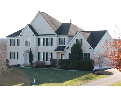 17 Steeple View Ct  West Amwell, NJ MLS# 3266584
