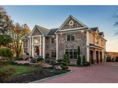 39 TANNERS BROOK RD  Chester Twp, NJ MLS# 3267844