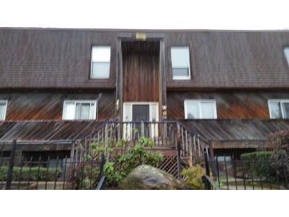 275-D lake shore south  Montague Township, NJ 07827 MLS# 3272622