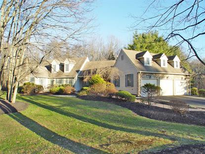 331 Rocktown-Lamb Rd  West Amwell, NJ MLS# 3273838