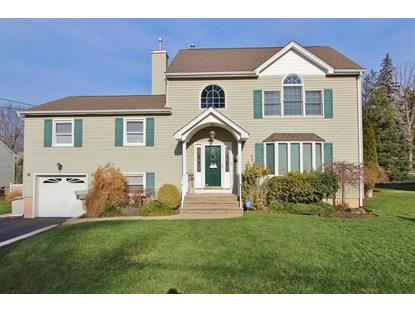 110 W Elmwood Dr  South Plainfield, NJ MLS# 3274295