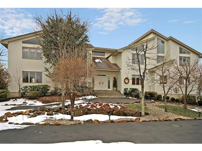 29 Windsor Dr  Montville, NJ MLS# 3277282