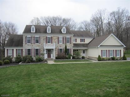 16 Fennimore Ct  Mount Olive, NJ MLS# 3277913