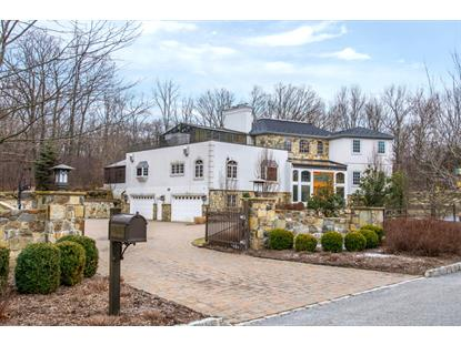 4 High Mountain Dr  Montville Township, NJ MLS# 3279086