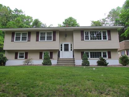 111 Mt Rascal Rd, Independence Township, NJ 07840