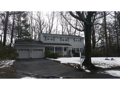 17 Woodruff Rd  Edison, NJ MLS# 3280058