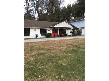 445 Route 206  Montague Township, NJ MLS# 3280575