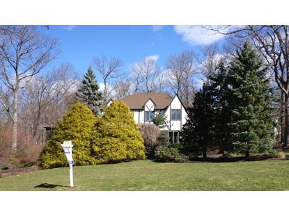 12 Branko Rd  Berkeley Heights, NJ MLS# 3281613