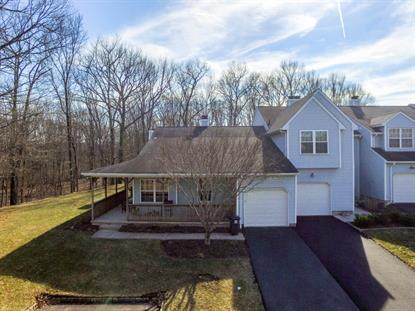 11 Blackfoot Trl  Branchburg, NJ MLS# 3282415