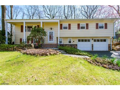 510 Stangle Rd  Martinsville, NJ MLS# 3286788
