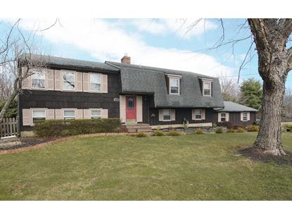 21 Old York Rd  Raritan Township, NJ MLS# 3288313